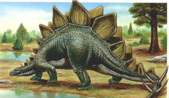 Des dinosaures sous nos pieds l 39 esprit sorcier - Dinosaure marin carnivore ...