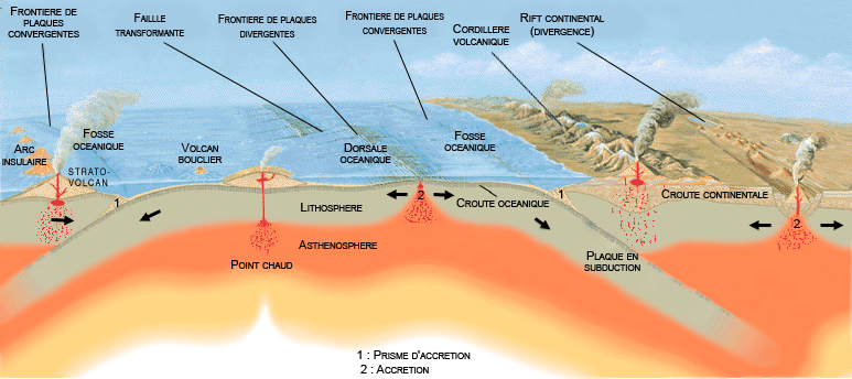 Schéma simplifié de la convection mantellique de l'accrétion (dorsales) à la subduction (fosses)