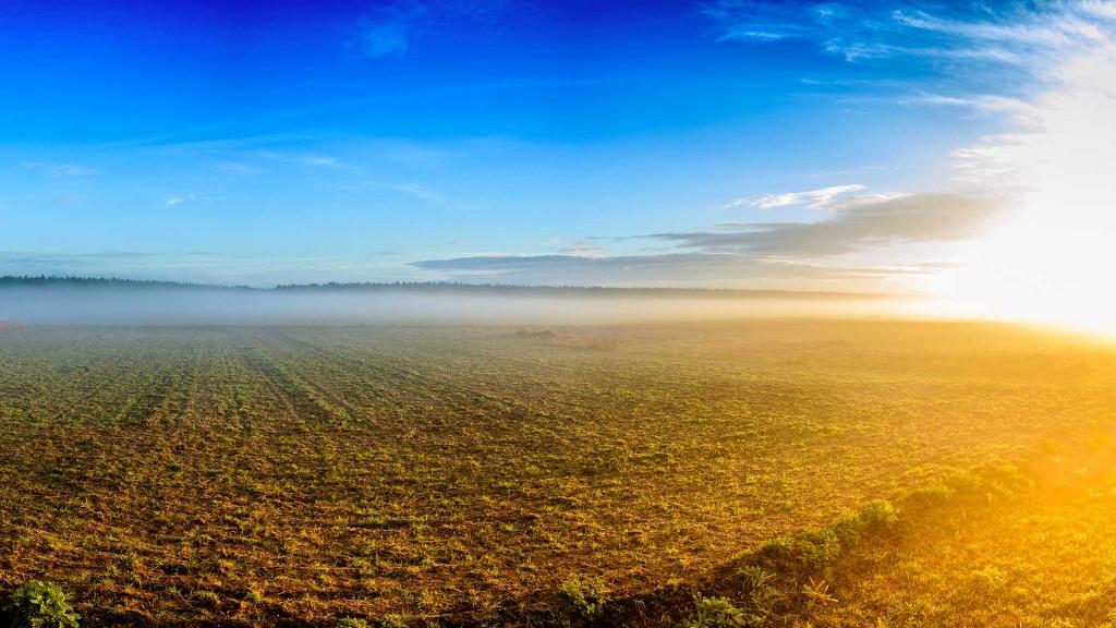 Sol et climat : cap sur l'agroécologie