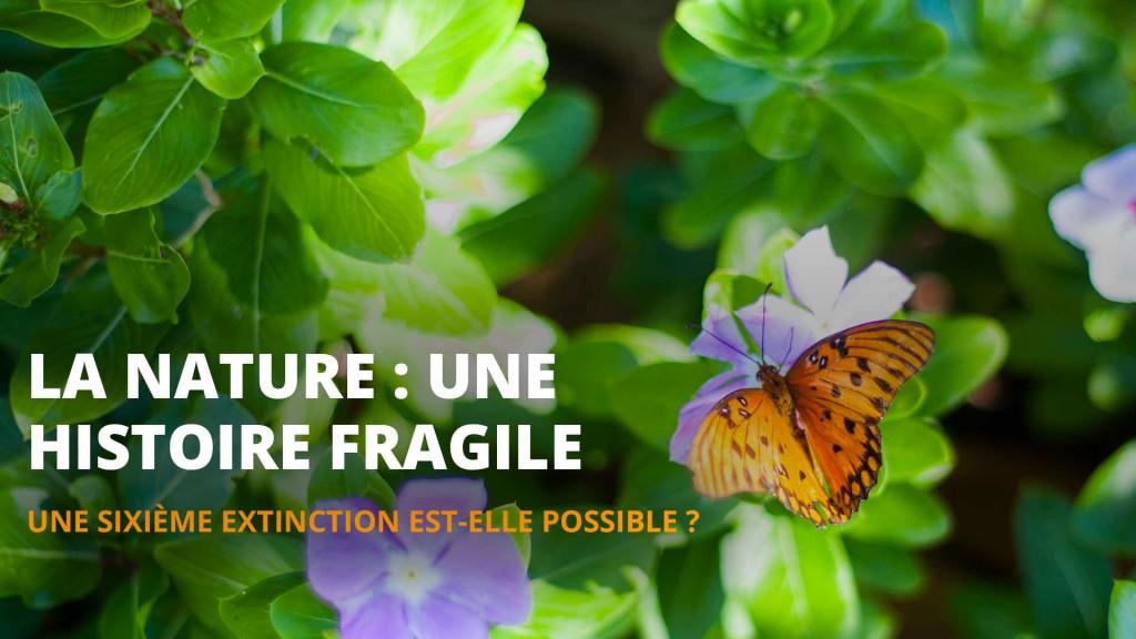 La Nature, une histoire fragile - Dossier 15 de l'Esprit Sorcier