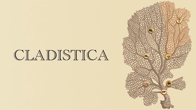 Cladistica, le Tinder de la phylogénétique