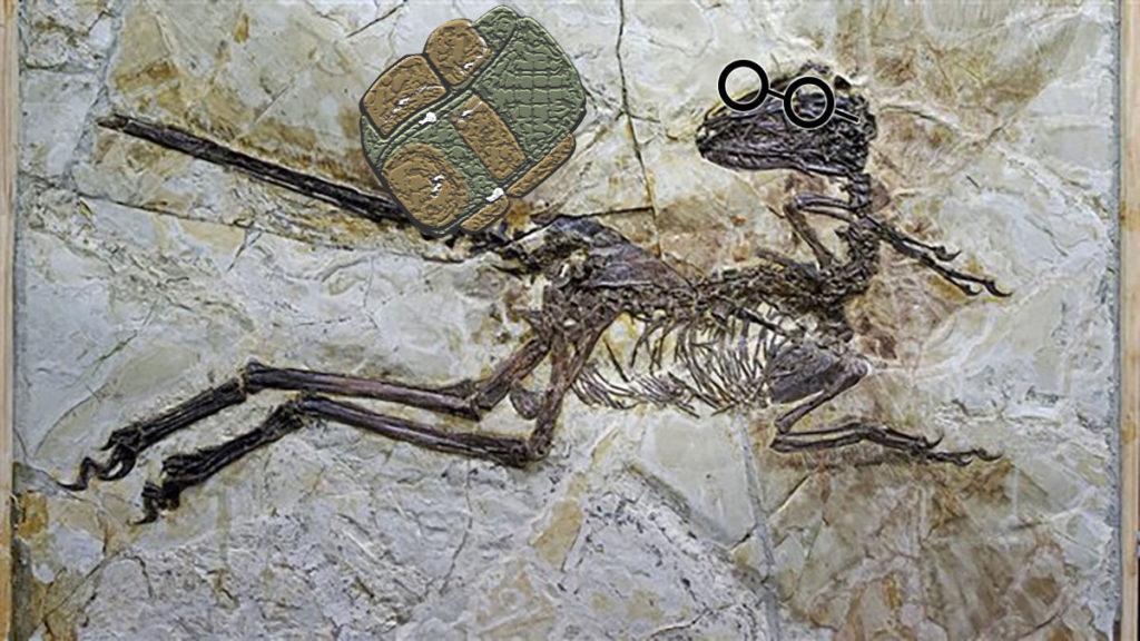 fredejamyus-fossile