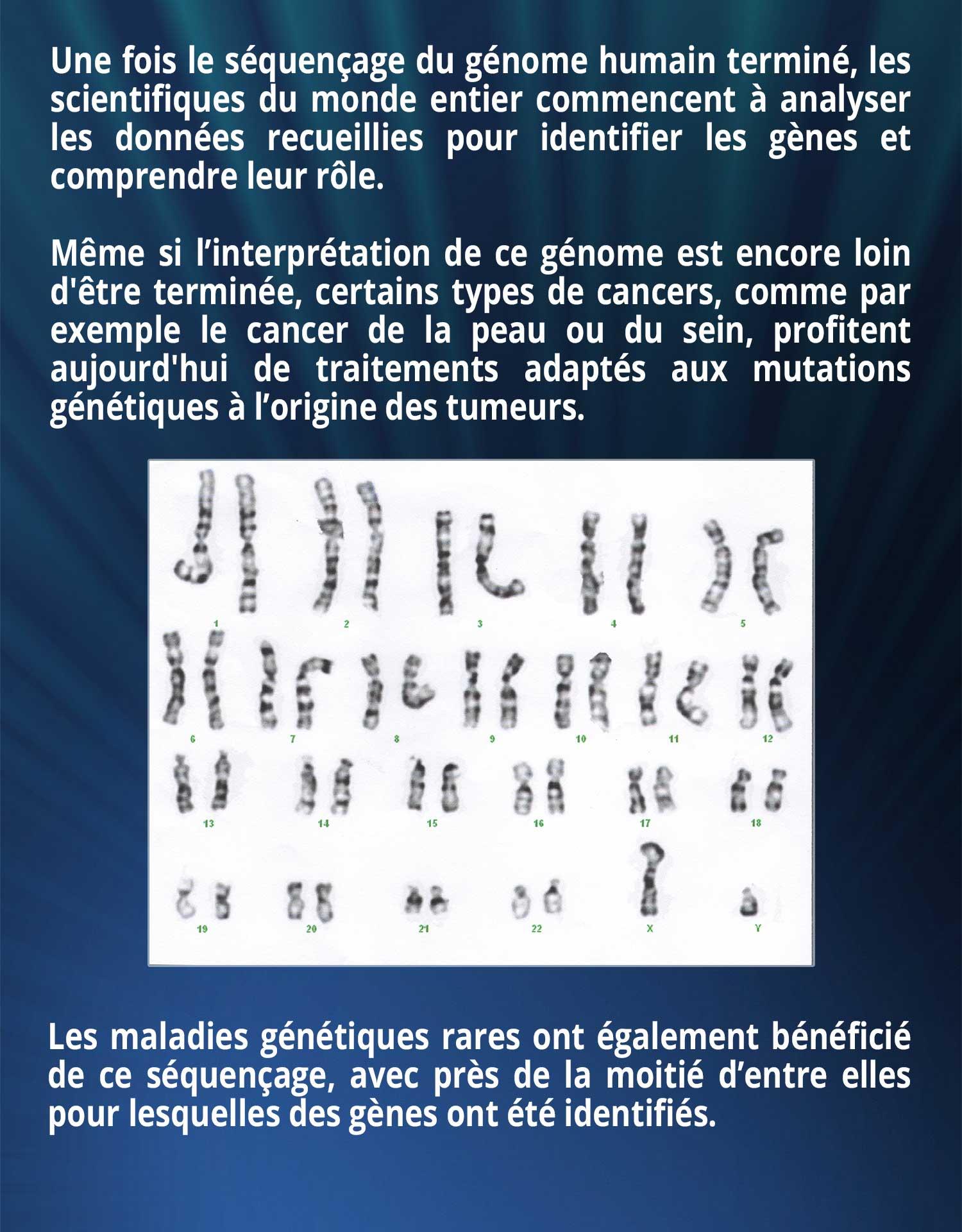 Une fois le séquençage du génome humain terminé, les scientifiques du monde entier commencent à analyser les données recueillies pour identifier les gènes et comprendre leur rôle. Même si l'interprétation de ce génome est encore loin d'être terminée, certains types de cancers, comme par exemple le cancer de la peau ou du sein, profitent aujourd'hui de traitements adaptés aux mutations génétiques à l'origine des tumeurs.